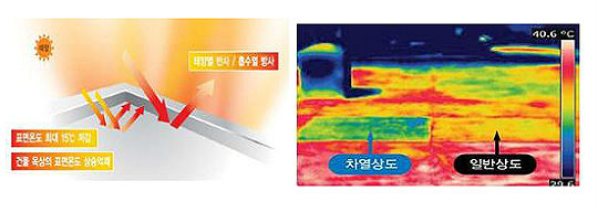 부산시, 화이트 쿨루프 시범사업 추진한다  일요신문